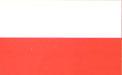 Poland U19 logo