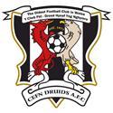 Newi Cefn Druids logo