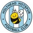 Holyhead logo