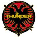 Dandenong Thunder logo