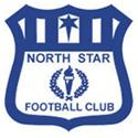 North Star logo