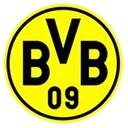Borussia Dortmund (Youth) logo