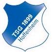 TSG Hoffenheim (Youth) logo