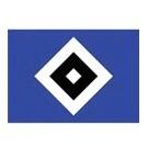Hamburger SV (Youth) logo