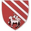 Droylsden logo