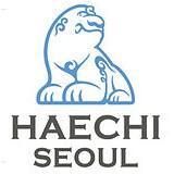 Seoul Amazones (w) logo
