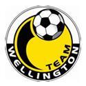 Team Wellington logo