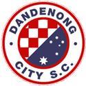 Dandenong City SC logo