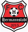 AFC Hermannstadt logo